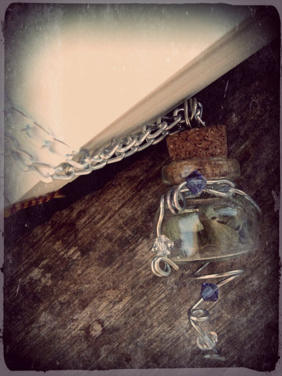 Elena's Necklace - Real Vervain Vial With Purple Transparent Beads by Dryw on Etsy