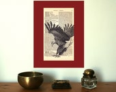 Landing Bald Eagle Large Art Print on an Antique 1896 Dictionary Book Page
