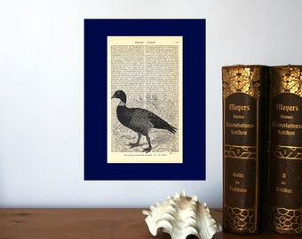 Brent Goose Vintage Art Print on Antique 1896 Dictionary Book Page