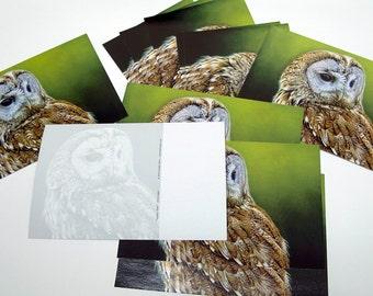 POSTCARD 'Tawny Owl'