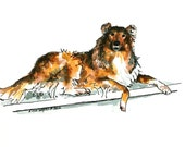 """Sable collie dog watercolor original painting 6"""" x 4"""" animal art pen and ink canine dog pet portrait"""