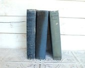 Blue Books Instant Library Collection Decorative Vintage Book Bundle Photography Props Shades of Blue Shabby Chic