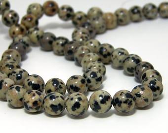 Dalmatian Jasper beads, 8mm round gemstone, full or half strands available  (535S)