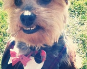 Plaid Dog Bib with Collar and Bow Tie