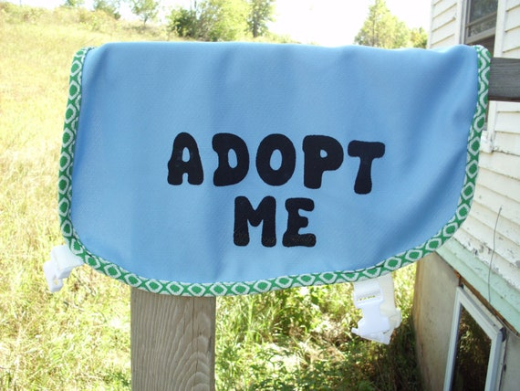 Dog Adopt Me Vest Medium/Large Blue with Green & White Trim