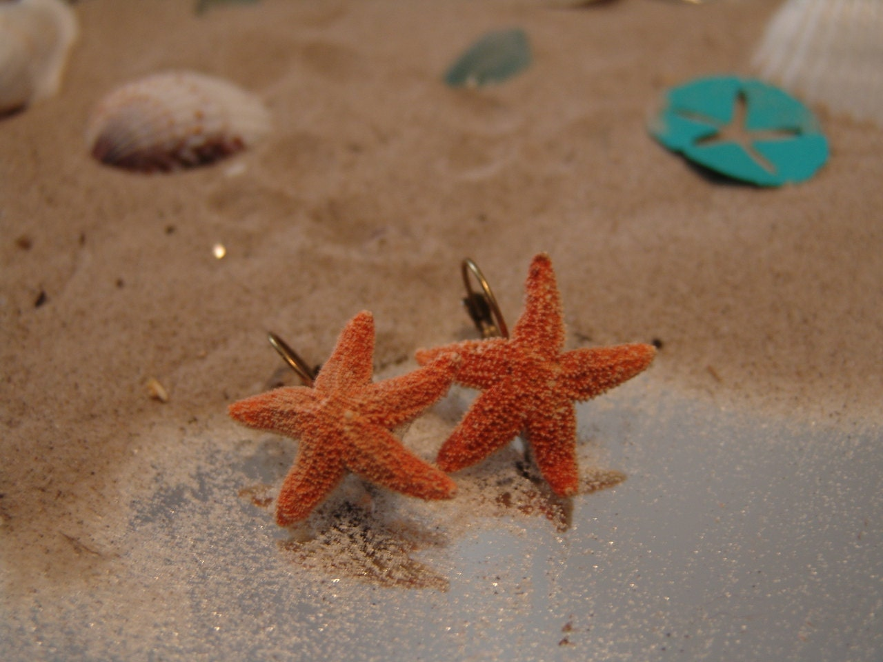 Baby Starfish Baby sugar sea star earrings-