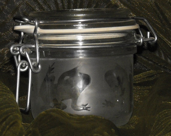 etched FROGS on air tight glass jar