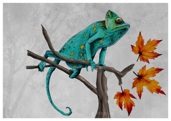 Chameleon illustration drawing-Teal chameleon in acrylic, watercolor and pencil-print of original illustration