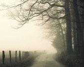 landscape photography, fog, rural, road, moody, trees, country road, Hyatt Lane 12 x 8 print