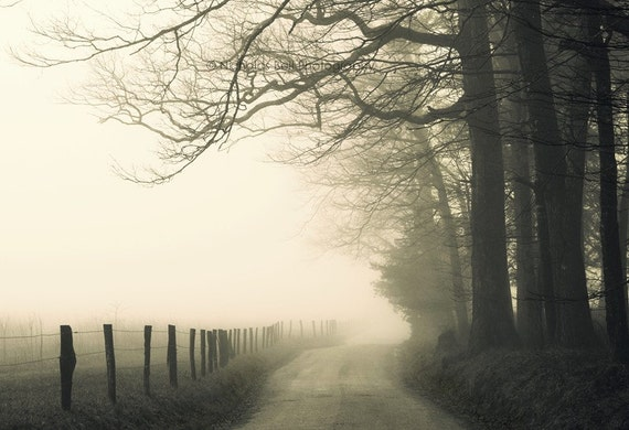 landscape photography, modern rustic, road photography, black and white, country roads, rural landscape