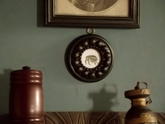 picture frame, small black picture frame, round frame f8