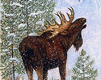 NOTE CARD, Moose, Snow, Trees, Bull Moose, Cabin Decor, Lodge Decor, moose decor
