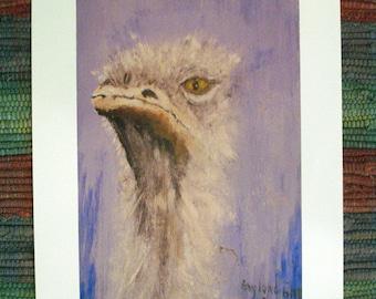 Ostrich with Attitude, digital print, a Gaylord Perry, 8.5 x 11, original artwork, original wildlife