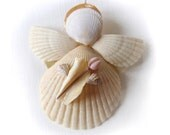 A Shell Angel Named Rosie