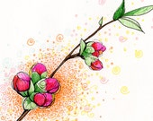 Pink Quince Branch: Drawing Print (5x7)
