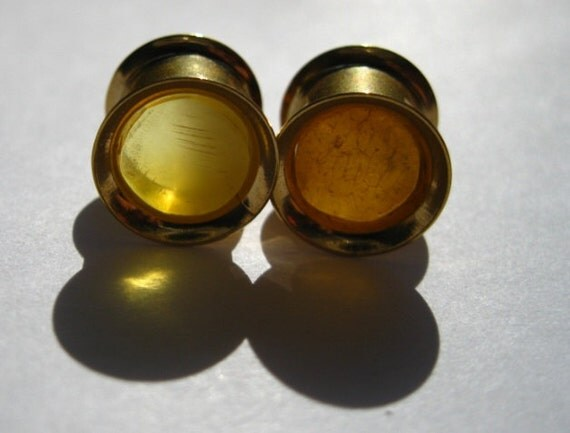 00g 10mm Zircon Gold Tunnels with Baltic Amber Inlays