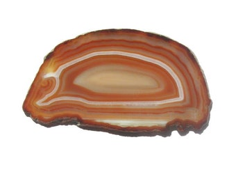 Sliced Amber Color Agate and Creamy Quartz Geode