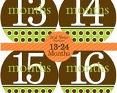 13 to 24 Baby Monthly Stickers (2nd Year Neutral JK BABIES) green, brown. Bodysuit Month sticker, Milestone, Baby Shower Gift, Photo Prop
