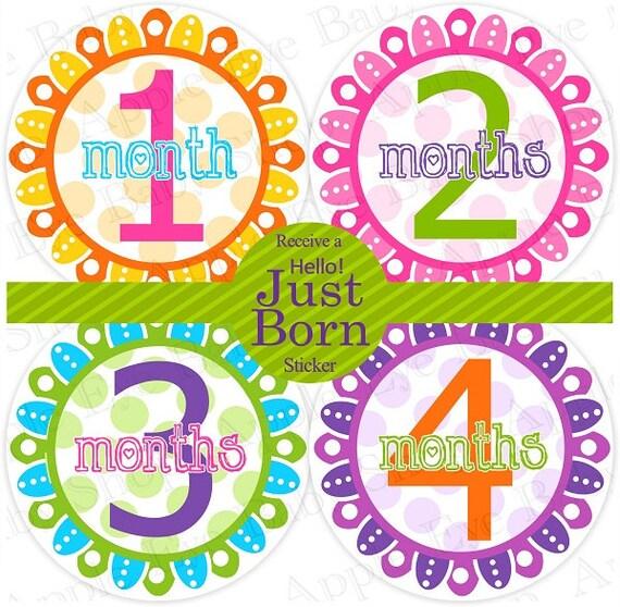 ON SALE Baby Monthly Stickers PLUS Just Born (1st year Flower Wonderland) pink.orange.purple. Milestone, Bodysuit, Photo prop, Shower gift