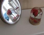 Enchanted Rose Snow Globe