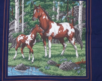 Pauline's Horse Vest