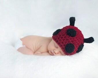 Baby Ladybug Crochet Hat--Newborn Photo Prop or Halloween Costume