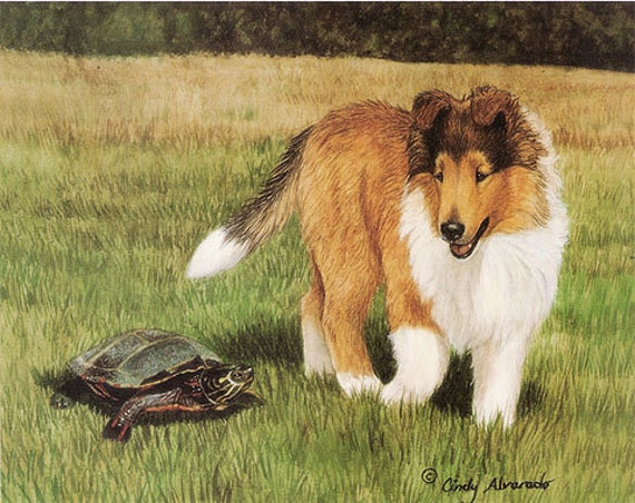 I Wonder, Collie lithograph print by Cindy Alvarado