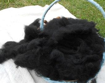 6 oz carded Black Alpaca Wool