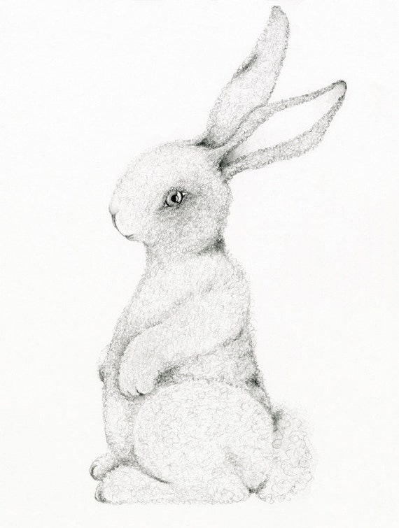 Bunny Art Print Bunny Nursery Wall Art for Baby's Room Baby Shower Gift Kids Wall Art Fine Art Print for Baby's Room