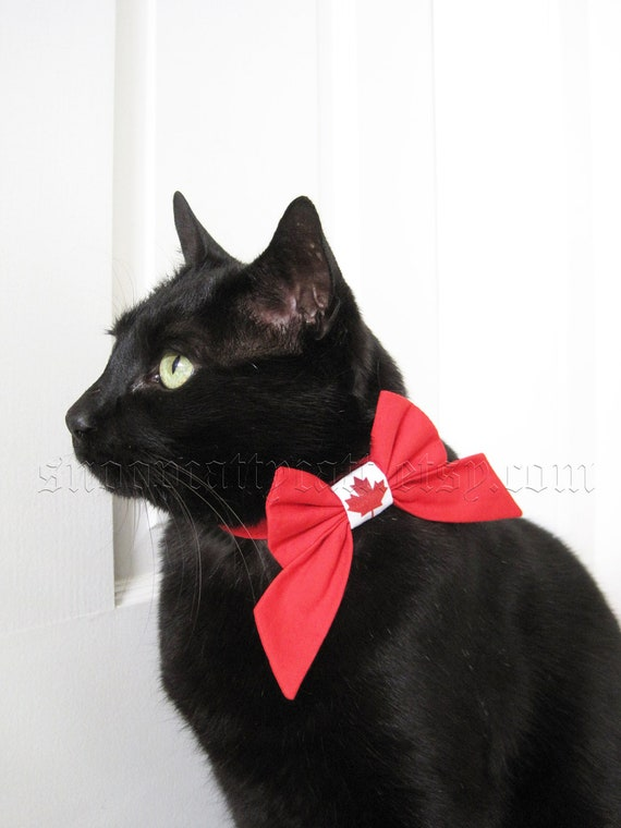 Lady Cat Bow - Canada Day