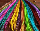 Wholesale Feather Hair Extensions Bulk Pack 25 Salon Plumes 8-12inch XL Long Feather Extensions Grizzly, Natural, Dyed Hair Feathers