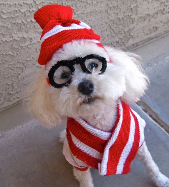 Dog Costume Where's Waldo WOOF Pet Halloween Hat, Scarf, Glasses XS-S