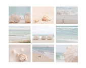 Beach Photography set, beach decor, ocean photography, shell, seagull, beach house decor, coastal living, pastel, soft, sea green, peach,