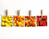 Kitchen photography set of 4 10x10cm (4x4 inches) Hostess gift idea Red orange yellow chili pepper Wall decor Farm market Spices cooking