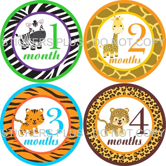 Baby Boy or Girl Neutral Monthly Stickers Plus FREE Gift Zoo Jungle Animals Zebra Giraffe Leopard Tiger 1-12 Months Baby Month Stickers