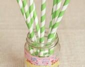 15 Cannucce a righe bianche e verdi - 15 Green and White Striped Paper Straws