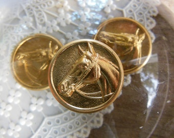 Classic Horse Head Emblem Medallion ( 2 pc )