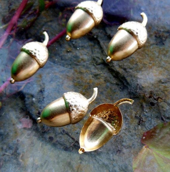 Little Acorn Nuts (6 pc)
