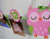 Owl Party -  First Year Photo Clothespin Banner - Pink and Green