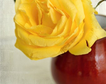 Yellow rose in a Red pitcher, Shabby chic home, Nature photography,  Floral still life, French country home, Flower print, Gift for women