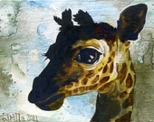 Baby Giraffe - limited edition giclee print
