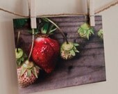 """Greeting Cards Photography Fine Art Print """"Simply Spring Strawberries"""""""