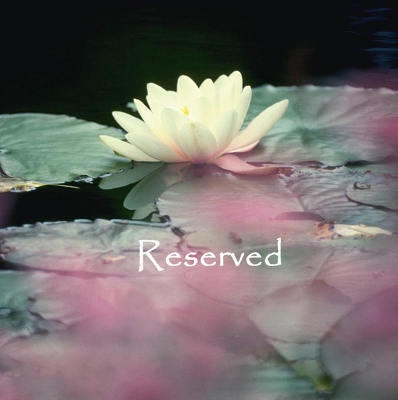 RESERVED for Kathy Cronin - Heart Stones