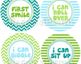 Monthly Baby Boy Stickers, Milestone Stickers, Baby Month Stickers, Monthly Bodysuit Sticker, Monthly Stickers (Ryder)