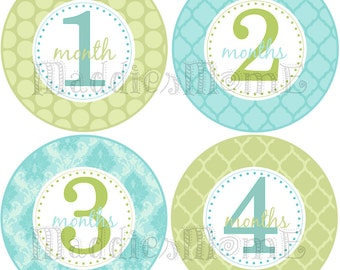 Monthly Baby Boy Stickers Baby Month Stickers, Monthly Bodysuit Sticker, Monthly Stickers Gender Neutral Baby (Jack)