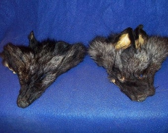 2 Real animal fur Tanned dyed silver fox face head taxidermy skin hide parts man cave rendezvous regalia