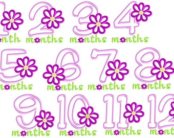Daisy Monthly Milestones Applique and Embroidery Design File 4x4 5x7 Girl's Months 1 - 12