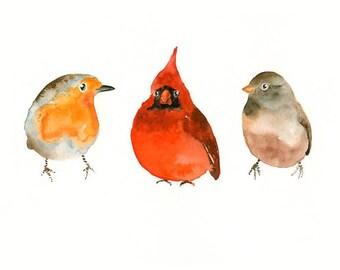 THREE little BIRDS-Print 10X8inch Art Print 8x10inch-Poster-Archival print-Animal print-wall decor-home decor-bird art