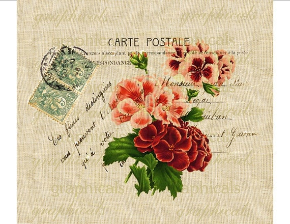 paris decor geraniums instant clip art carte postale digital. Black Bedroom Furniture Sets. Home Design Ideas