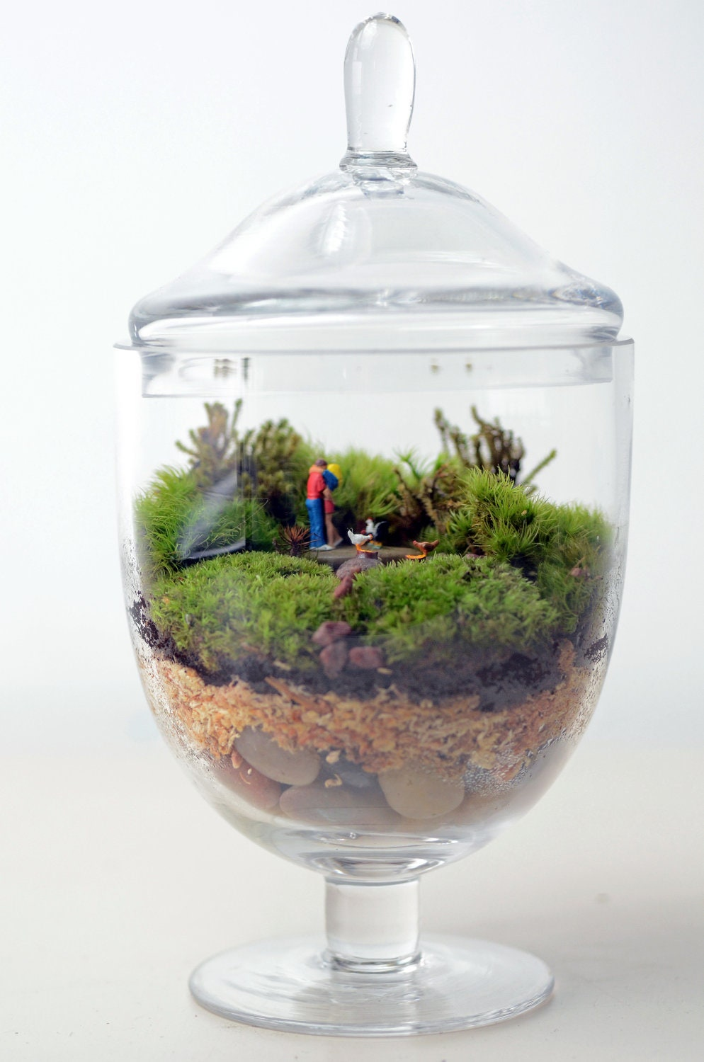 moss terrarium woodland lovers 1 apothecary by pinkserissa. Black Bedroom Furniture Sets. Home Design Ideas